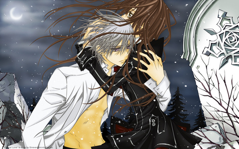Here,one of my Избранное actually there a lot of them ^_^ Vampire Knight