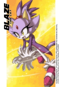 I'm naturaly Blaze. A beautiful Courageous, Outgoing , Joyful, Purple Cat. She's a princess of a different world and is 14 and best বন্ধু with Silver and Marine.