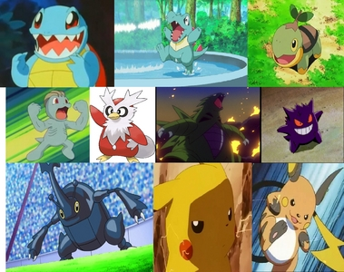 My favorites are Squirtle, Totodile, Turtwig, Machop, Delibird, Tyranitar, Gengar, Heracross, Pickachu, and Raichu.