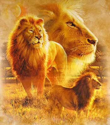 Lions, Wolves, Snakes but I really amor Lions