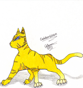 I just joined, so it's not really official but... Name: Goldenblaze Moons: 13 moons Bio: His mother was killed bởi a fox, and he never knew his father. He was found in a fox-trap and rescued bởi the StormClan medecine cat. When that happened he was a kit, so he became a 'paw and trained for many moons to become a warrior. Personality: Kind, caring, sweet, and would protect his clan with his life. He is all of the following, plus a very good fighter when it comes to combat. Family: Unknown Clan: StormClan