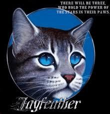 I have the hugest crush on Jayfeather. I just don't like him, I amor him. To me, he's the best Warrior Cat that ever existed! XD I also sorta like Breezepelt, but I amor Jayfeather! :)
