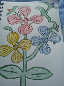 Just some random flowers I drew one دن =P