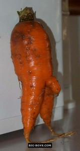 ok this is mister carrot.