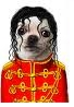 hola put on a foto of a celebrity and tell me who it is and why tu have choosen it have one example michael jackson as a chihuahua GOOD LUCK!!!
