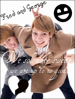 nah, not really, I just ♥ the Weasley twins from Harry Potter x