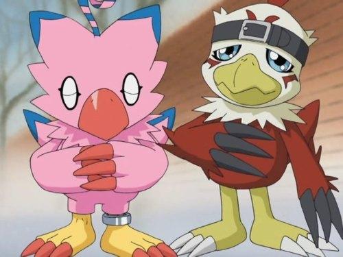 I cinta Biyomon and Hawkmon~!!