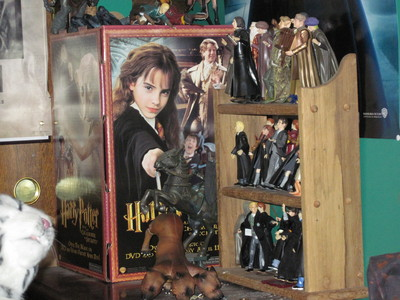 Harry Potter memorobelia (this shot is just a small fraction of what I have.)