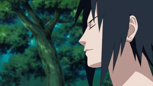 My first was Sasuke Uchiha =^.^= But দ্বারা now I probably have so many that it would be impossible to তালিকা them all XD
