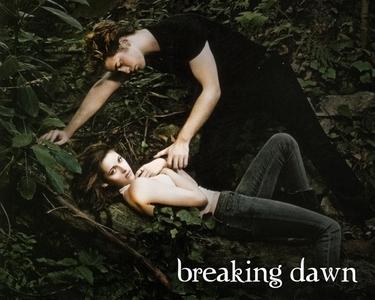 Read twilight breaking dawn online
