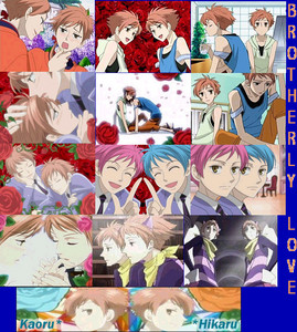 Well...i like the lucky estrela twins i amor Rin and Len but my number one favorito twins our....HIKARU AND KAROU! =D there the hottest funnest evilest hottest Twins ever!