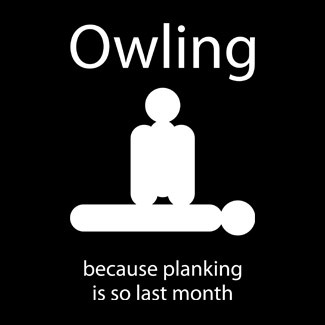 Beats me. But apparently Owling is the new Planking:
