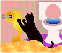 the kitten bạn forgot u hadXD