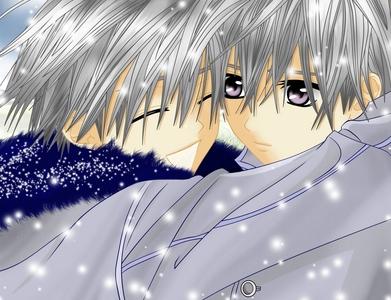 Zero and ichiru from vampire knight