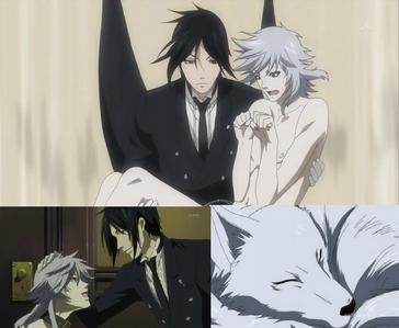 My प्रिय Is A Dog Named Pluto(From Black Butler) He Transforms Into A Human When Excited! Human: चोटी, शीर्ष And Bottom Left Pictures/White Hair Dog Form: Bottom Right Picture Isn't He So Cute ^-^