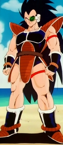 WELL i'm like the girl version of Raditz my hair is sort of like that... just shorter :)