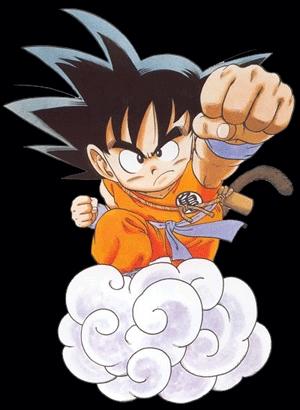 Sonic X, Sailor Moon, DB and DBZ, Yu Yu Hakusho, Pokemon, a couple of the Hayao Miyazaki movies. I also remember InuYasha...