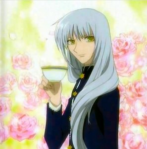 Yes Ayame Sohma is a guy.
