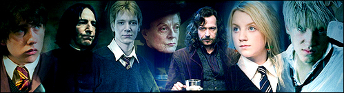 My favories are Fred, Sirius, mcgonagall, Luna, Draco, Snape and Neville. My least Kegemaran are Umbridge (stupid bitch), Ginny (She's really boring) and Bellatrix (She killed Sirius).