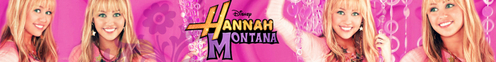 This is an all Hannah Montana banner if that's okay.