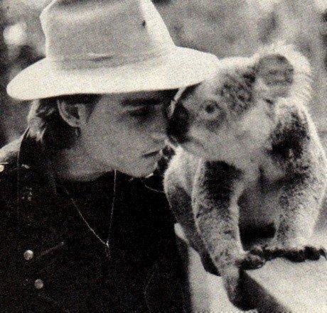 JD and a koala ;) ^_^ <3