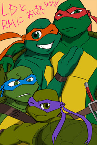 Which of the turtles is the cutest?