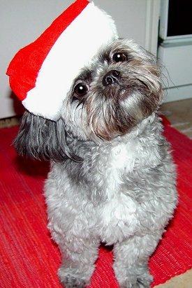 Merry krisimasi everyone!!!!!! ♥ May all your wishes come trueee!! i hope mine too... :P