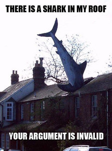 Sometimes I do and sometimes I don't. I believe that I use to be a shark... a flying shark.
