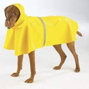 A raincoat, または rain gear. I had one when I was little, it was the UGLIEST yellow color ever. No offense to those who 愛 yellow. ;)