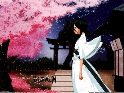 Hey i have one of Rukia too XD Cherry blossoms O.O