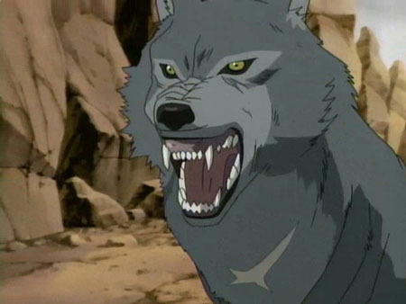 Tsume from Wolf's Rain. :]