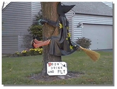 Watch out that tree!