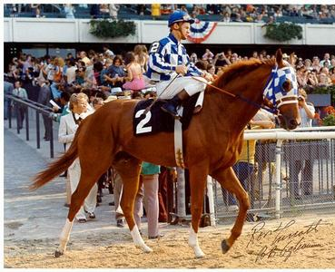 yêu thích jockey and/or race horse?