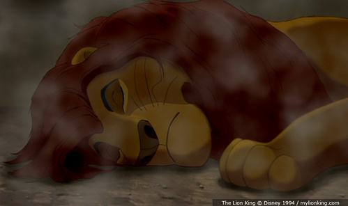 Did u notice when Mufasa is lying dead in the gorge that the scratch marks that Scar made on his paws are gone?.