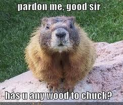 The ultimate question: How much wood could a woodchuck chuck if a woodchuck could chuck wood?