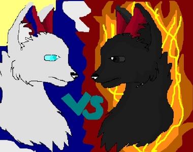 Warriors:battle of the mèo (contest)