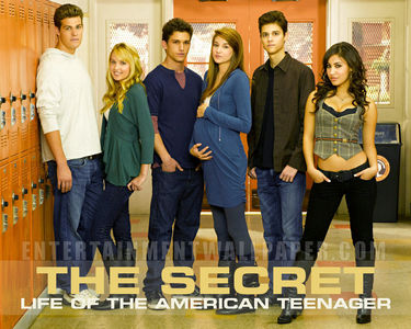 someone some know if the will be a season 4 of The Secret Life of the American Teenager???