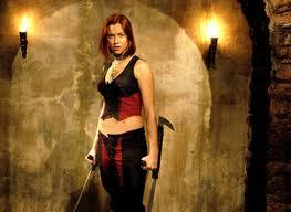 Has anyone seen the Bloodrayne Films ?