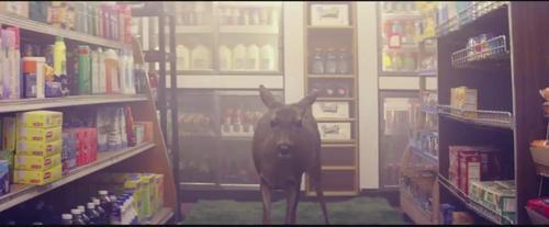 Post a pic from ur fav muziek video