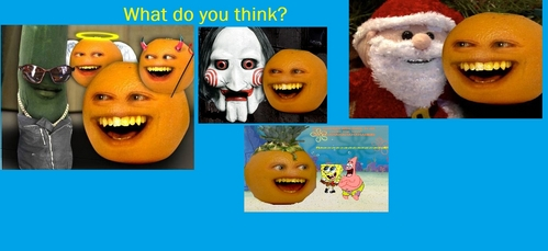 What do u think of the annoying orange?