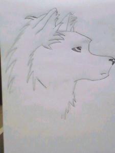 Do tu like my drawing?
