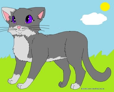 I'd be a ThunderClan cat. Kit name:Silverkit Apprentice name:Silverfur Warrior name:Silverleaf