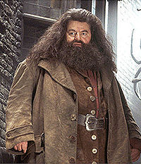 Rubeus Hagrid He is giant and wild looking but he is very kind-hearted in contrast. And I like people who try to understand and make دوستوں with animals. Rather than see them as trophy objects.