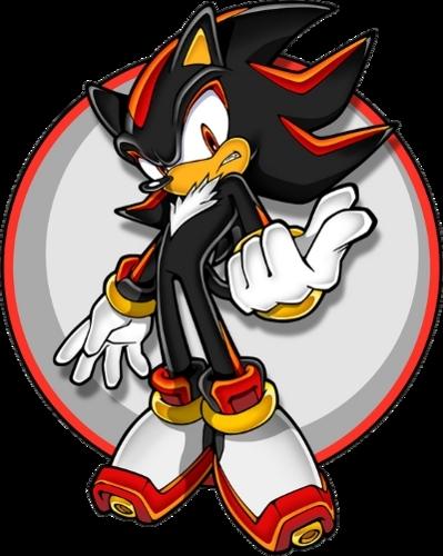 Shadow is soooooooooo much hotter than Sonic!!!