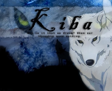 My favourite character is Kiba, as he is loyal and strong and once he sets his mind on something it gets done, although sometimes that makes him do things that he cant always handle on his own AND HE IS HOT!