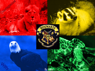 HARRY POTTER!!!!!!!!!!!!!!!!!!!!!!!!!!!!!!!!!!!!!!!!!!!!!!!!!!!!!!!!!!!!!!!!!!!!!!!