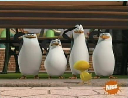 pinguin of madagscar ROX!!!!!!!!!!!!!!