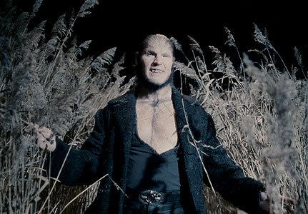 Fenrir Greyback - RAWR!!!! *I wanna wear shirts like that :P