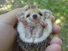 aren't I cute?