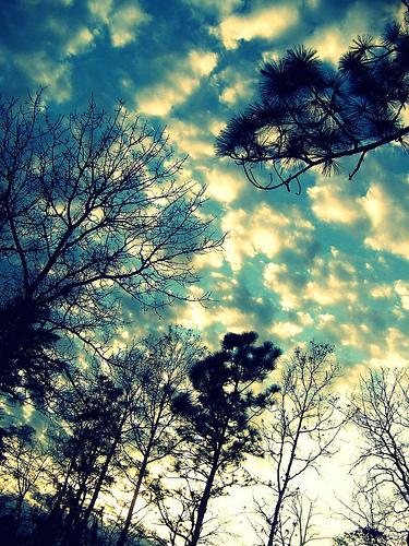 Pretty Sky! :)